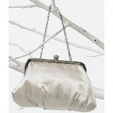 Silver evening purse with crystal accents