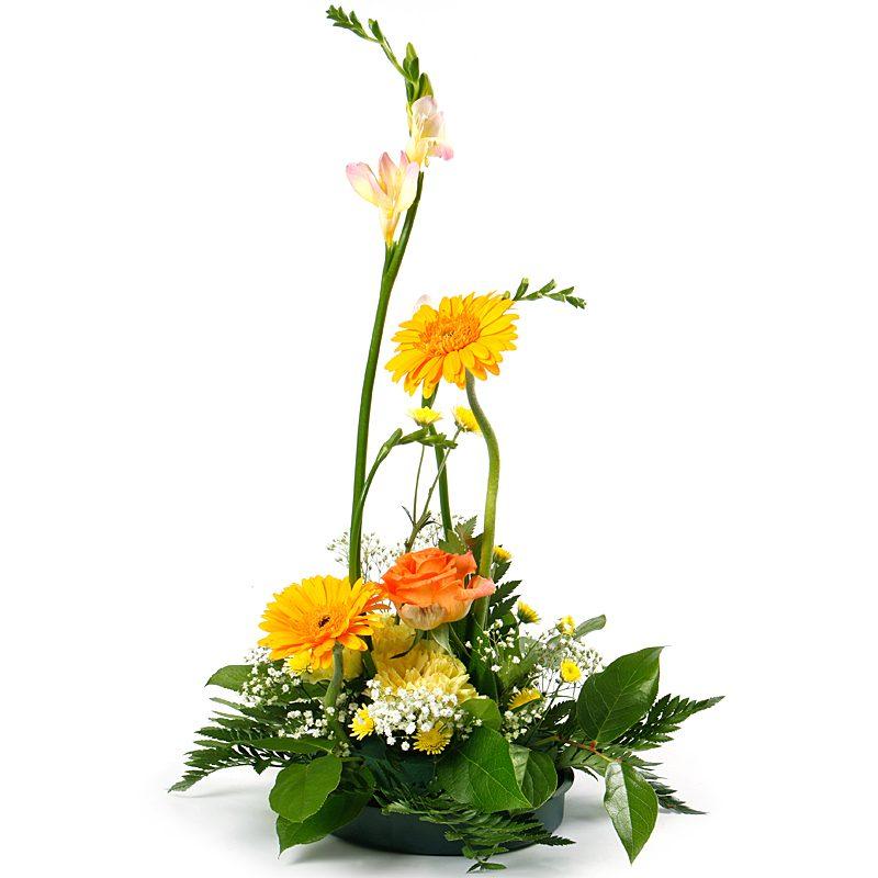 Glowing Happiness Blossoms Flower Composition