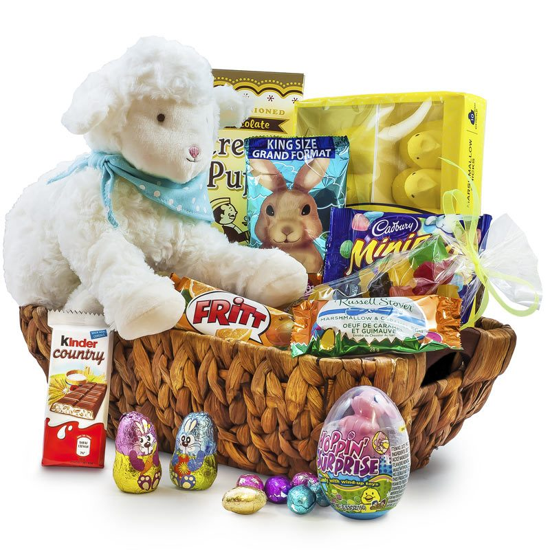 Kiddo lamb my new best friend easter gift basket negle Choice Image